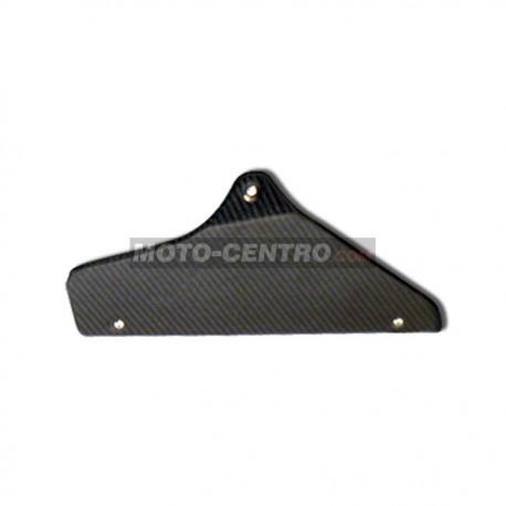 Protector catalizador CARBONO LEOVINCE CB1000R